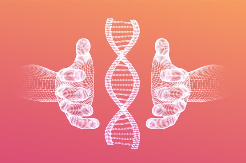 An Introduction to DNA Based Diets